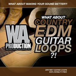 What About: Country EDM Guitar Loops